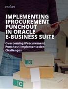 iProcurement Punchout Implementation White Paper